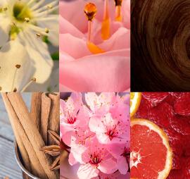 El perfume como terapia de amor propio